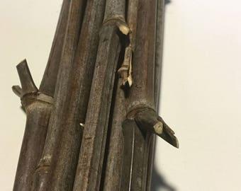 10-Black Bamboo poles, natural sticks, bamboo art, bamboo decorations, floral filler, bamboo craft
