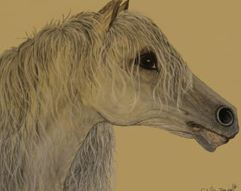 Horse print, Horse art, Printable horse art, Digital horse art, Horse wall art, Horse art print