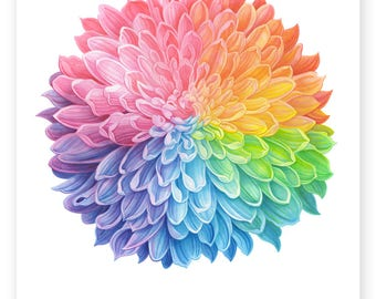 Rainbow Chrysanthemum - A4 Signed Giclee Print