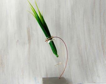 Minimalist Vаse, Hanging Glass vase, Geometric Vase, Mini Glass Vase, Test tube bud vase
