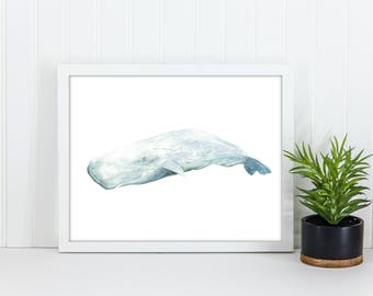 Sperm Whale Watercolor, Original Digital Printable File