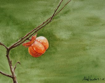 "Persimmon, Original Watercolor Painting, Wall Decor, Food Print, Size: 24 x 32cm (9,4"" x 12,6"")"