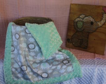 Baby boy MINKY blanket