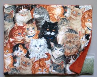 Catnip Mat and Catnip Gorgeous Cats  Refillable Reversible