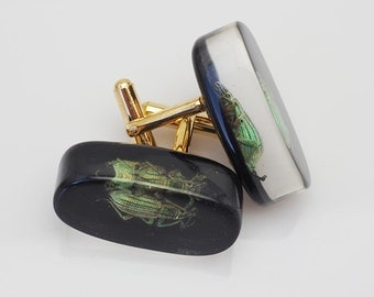 Black lucite cufflinks with real exotic bugs