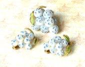RESERVED - Vintage Forbidden Fruit Blue Grapes Brooch & Clip Earrings - Lucite Fruit, Light Sapphire Rhinestone, Austria, Swarovski Crystal