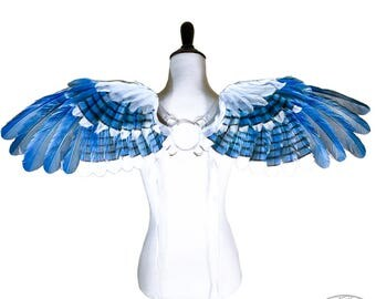 Blue Jay Wings - Micah No. 2 - Small Feather Angel Wings