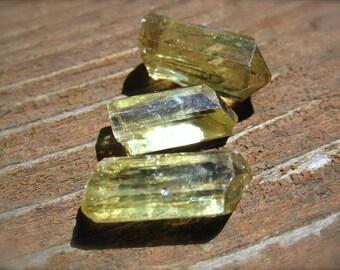 3 Yellow - Green Apatite Natural Gemstone Specimens - 19mm X 9mm