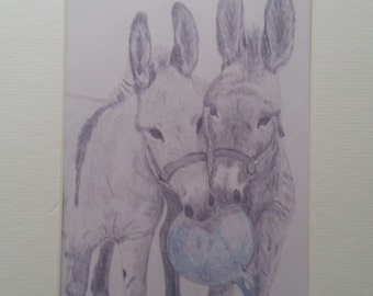 "Donkey Boys Best Friends!  5""x7"" Graphite Print matted"