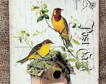 Yello Birds on Birdhouse Gift or Scrapbook Tags or Magnet #117