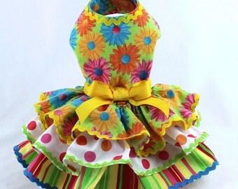 Dog Dress, Dog Harness Dress, Dog Fashion for Small Dog, Summer Dress for Dogs, Ruffle Dress, Handmade, Custom Dog Dress, Pink, Daisy