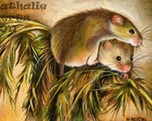 ACEO Limited Edition Hand Embellished PRINT Harvest Mouse Mice Animal Nature Wildlife ART