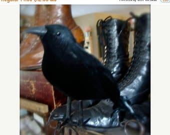 ON SALE Gothic Raven Black Bird One Large CrEepY Old Black Crow