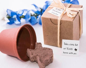Texas Wedding Favors, Texas Bluebonnet Gifts & Party Favors, Set of 100, Personalized Favor Tags for Texas Themed Events, Handmade in Texas