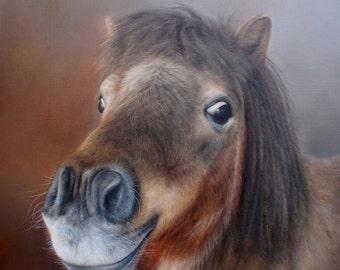 SAM DOLMAN Pony Animal Limited Edition Print