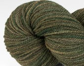 Handpainted DK weight yarn, locally grown and spun Targhee wool, Meriwether, 100 g, Spring Sapling