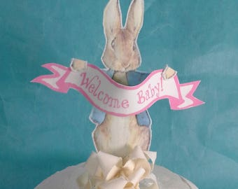 Peter Rabbit cake topper, fabric Peter Rabbit baby girl shower party decoration G058