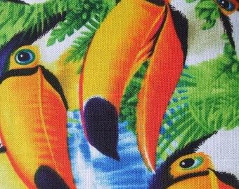 Toucan Selfies Tropical Bird Timeless Treasures Fabric