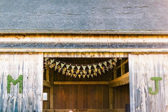 Rustic White & Gold Pennants