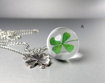 Necklace - genuine four-leaf clover
