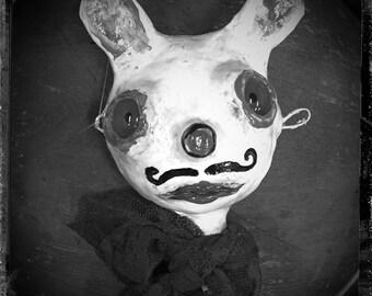 Surreal Bunny Portrait Photograph, cute rabbit photograph, fine art, dark fairytale, whimsy wall art, kids room wall decor, sweet face
