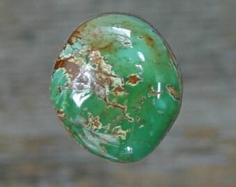 Turquoise cabochon Kings Manassa Colorado mine   cabochon,  B-89