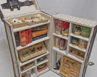 Dolls House Miniature Darwin Museum Filled Trunk / Museum / Victorian Collector Natural History OOAK