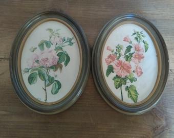 Vintage Oval Framed Rose Prints