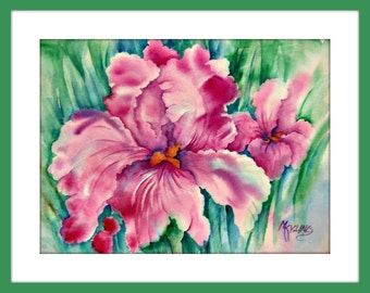 Watercolor Large Pink Iris by Colorado Artist Martha Kisling