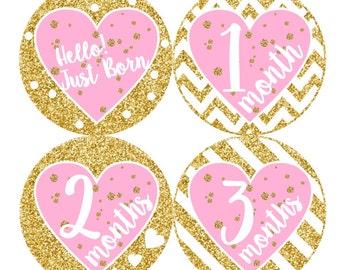 1st Year Baby Month Stickers, PLUS Just Born, Baby Girl Bodysuit Stickers, Monthly Sticker, Milestone Sticker, Pink Gold Glitter Hearts 167G