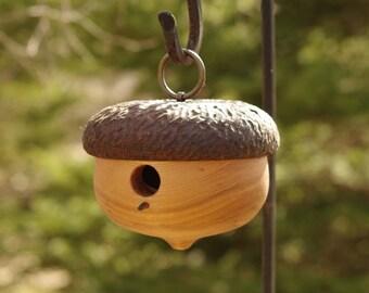 Acorn Birdhouse - Outdoor and Garden - Birds and Bees - Naturalist