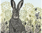 5 Spring Hares Art Cards Collection