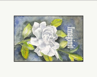 Original Miniature Painting in Watercolor - White Rose