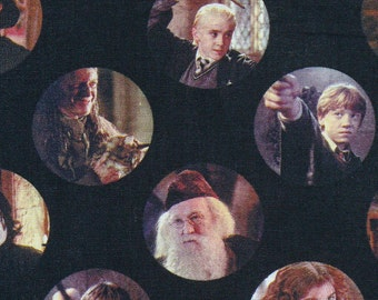 Harry Potter Fabric, Hermoine, Ron, Draco Malfoy, Dumbledore, McGonagall, Circles,  New Release,  J K Rowling,  By the Yard, Cotton Fabric