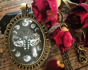 Death's Head Hawkmoth Necklace ~ Painted Specimen under Glass in Antique-Brass Filigree Cameo Pendant ~ Gothic Victorian Moth Moon Phases