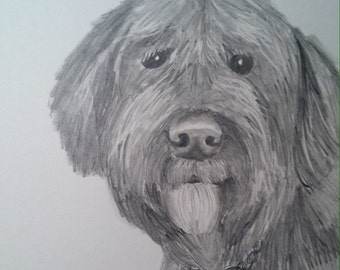 custom drawing from photo dog cat pet