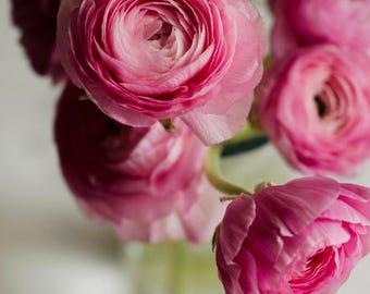 pink flower art, floral nursery decor, ranunculus art, chic floral decor, white and pink decor, romantic home decor, floral still life,