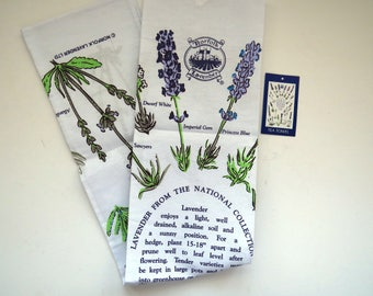 Lavender Plant Kitchen Tea Dish Towel by Norfolk Lavender - Growing Instructions - Faithfulness - Kitchen Decor - Shabby Chic - Gift