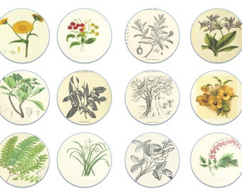 """Floral Circle Digital Download Cabochon, Pendant, 2"""", 50mm, 2 inch, Collage Sheet. Will resize to any size you need."""