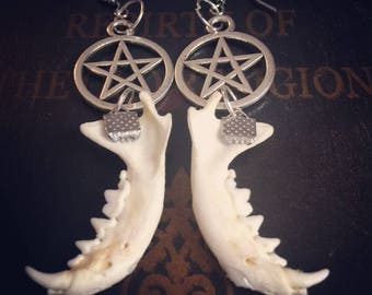 Jaw Bone Earrings- real bone jewelry- Taxidermy