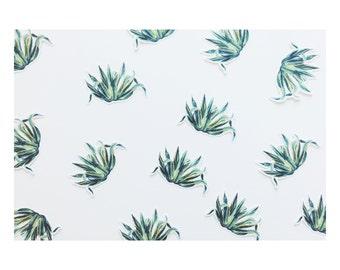 Aloe Plant Die-Cut Sticker