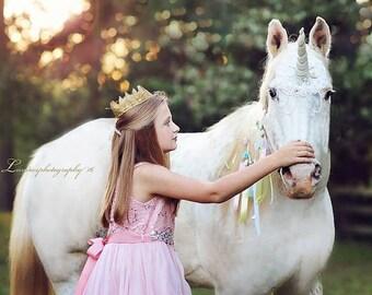 Unicorn Horse Mane Swag