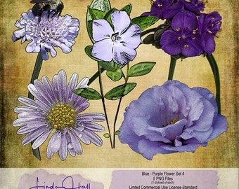 Blue and purple flower Set 4 (Extracted)
