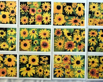 Collage of Blackeyed Susans - Notecards