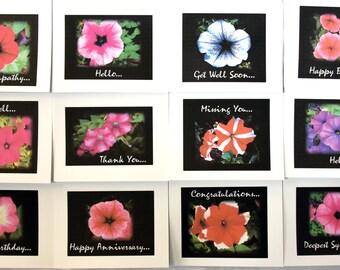 Petunias of Summer - Notecards