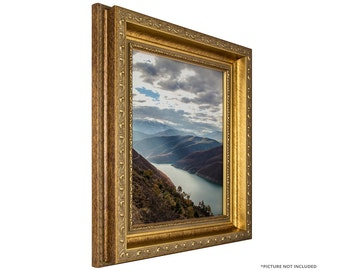 craig frames 18x24 inch brushed antique gold picture frame french ornate 2 wide 66071824