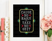 PDF PATTERN ONLY Cause no harm but take no sh*t counted cross stitch sampler 8x10