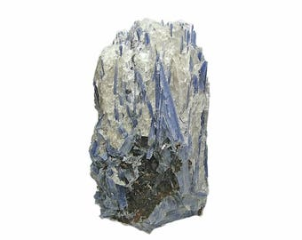 Kyanite BIG Blue Crystals in quartz matrix with Staurolite Mineral Specimen Mined in the gem fields of Brazil Collection Specimen, Focal