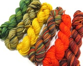 Autumnal - 6 Sock Skeins, 25 yds each, 150 yds total
