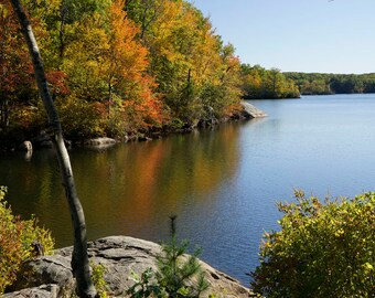 Fall Foliage in Lincoln Woods Rhode Island Landscape Photograph Print